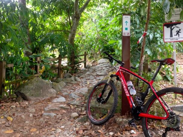 a bike trail in singapore